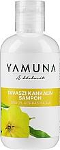 Fragrances, Perfumes, Cosmetics Oily Hair Shampoo - Yamuna Primrose Shampoo