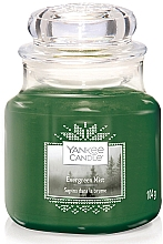 Fragrances, Perfumes, Cosmetics Scented Candle in Jar - Yankee Candle Evergreen Mist