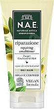 Fragrances, Perfumes, Cosmetics Hair Conditioner - N.A.E. Riparazione Repairing Conditioner