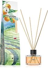 "Fragrances, Perfumes, Cosmetics Reed Diffuser ""Brazilian Orange"", with sticks - Allverne Home&Essences Diffuser"