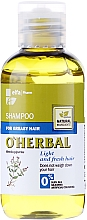Fragrances, Perfumes, Cosmetics Mint Extract Shampoo for Oily Hair - O'Herbal