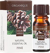 "Fragrances, Perfumes, Cosmetics Essential Oil ""Pine"" - Organique Natural Essential Oil Pine"