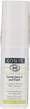 Fragrances, Perfumes, Cosmetics Organic Mint Refreshing Spray for Mouth - Coslys