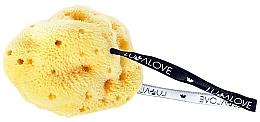 Fragrances, Perfumes, Cosmetics Makeup Remover Sponge - LullaLove