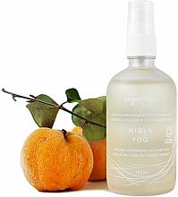 Fragrances, Perfumes, Cosmetics Moisturizing Face Mist with Hyaluronic Acid & Quince Extract - Uoga Uoga