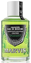 """Fragrances, Perfumes, Cosmetics Mouthwash """"Mint"""" - Marvis Concentrate Spreamint Mouthwash"""