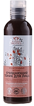 Fragrances, Perfumes, Cosmetics Gentle Cleansing Face Tonic - Planeta Organica 100% Natural Cleansing Face Toner