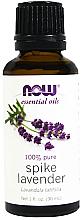 Fragrances, Perfumes, Cosmetics Essential Lavender Broadleaf Oil - Now Foods Essential Oils 100% Pure Spike Lavender