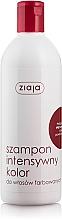 "Fragrances, Perfumes, Cosmetics Colored Hair Shampoo ""Intense Color"" - Ziaja Shampoo"