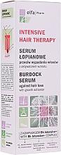 Fragrances, Perfumes, Cosmetics Burdock Hair Serum - Elfa Pharm Burdock Serum