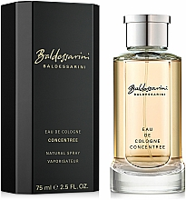 Fragrances, Perfumes, Cosmetics Baldessarini Concentree - Eau de Cologne (concentrate)