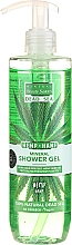 Fragrances, Perfumes, Cosmetics Hemp Shower Gel with Dead Sea Minerals - Mineral Beauty System Dead Sea Minerals & Cold Pressed Hemp Oil Shower Gel