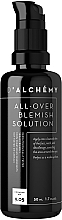 Fragrances, Perfumes, Cosmetics Cream for Oliy and Combination Skin - D'alchemy All Over Blemish Solution