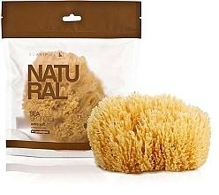 Fragrances, Perfumes, Cosmetics Bath Sponge - Suavipiel Natural Sea Sponge