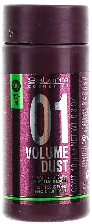Volumizing and Thickening Hair Powder - Salerm Pro Line Volume Dust 01 Mattifying Powder