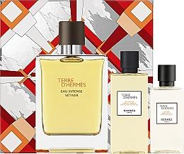Fragrances, Perfumes, Cosmetics Hermes Terre d'Hermes Eau Intense Vetiver Set - Set (edp/100ml + ash/lot/40ml + sh/gel/80ml)
