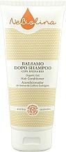 Fragrances, Perfumes, Cosmetics Hair Conditioner - NeBiolina Organic Oat Hair Conditioner