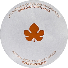 Fragrances, Perfumes, Cosmetics Scented Candle - Biofficina Toscana Purifying Blend Candle