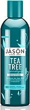 "Fragrances, Perfumes, Cosmetics Normalizing Shampoo ""Tea Tree"" - Jason Natural Cosmetics Tea Tree Treatment Shampoo"