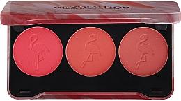Fragrances, Perfumes, Cosmetics Blush Palette - Makeup Revolution Flamingo Mini Trio Blush Palette Oh My Blush