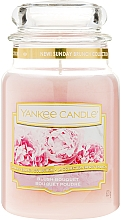 Fragrances, Perfumes, Cosmetics Candle in Glass Jar - Yankee Candle Blush Bouquet