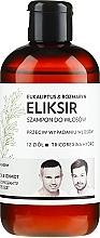 "Fragrances, Perfumes, Cosmetics Hair Elixir Shampoo ""Eucalyptus & Rosemary"" - WS Academy Eukaliptus & Rozmaryn Elixir Wash"