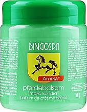 Fragrances, Perfumes, Cosmetics Horse Ointment with Arnica - BingoSpa