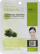 Fragrances, Perfumes, Cosmetics Collagen and Orostachys Japonica Extract Mask - Dermal Orostachys Japonica Collagen Essence Mask