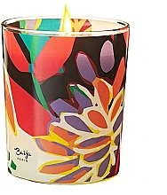 Fragrances, Perfumes, Cosmetics Scented Candle - Baija Vertige Solaire Scented Candle