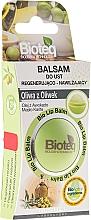 Fragrances, Perfumes, Cosmetics Lip Balm - Bioteq Bio Lip Balm Regenerative and Moisturizing Olive Oil