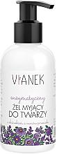 Fragrances, Perfumes, Cosmetics Cleansing Gel - Vianek Cleansing Gel