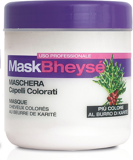 Color-Treated Hair Mask - Renee Blanche Mask Bheyse