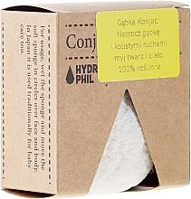 Fragrances, Perfumes, Cosmetics Skin Care Sponge - Hydrophil
