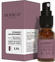 Fragrances, Perfumes, Cosmetics Blackcurrant Oil Mouth Spray 2,5% - Herbliz CBD Oil Mouth Spray 2,5%
