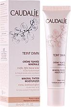 Fragrances, Perfumes, Cosmetics Moisturizing Tinted Mineral Cream for Dark Skin - Caudalie Teint Divin Mineral Tinted Moisturizer