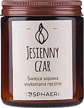 "Fragrances, Perfumes, Cosmetics Scented Soy Candle ""Autumn Charm"" - Bosphaera Autumn Charm Candle"