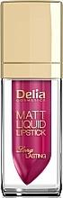 Fragrances, Perfumes, Cosmetics Lipstick - Delia Cosmetics Matt Liquid Lipstick