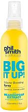 Fragrances, Perfumes, Cosmetics Volume Boosting Spray - Phil Smith Be Gorgeous Big It Up Volume Boosting Spray
