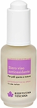Fragrances, Perfumes, Cosmetics Anti-Oxidising Facial Serum - Biofficina Toscana Antioxidant Facial Serum