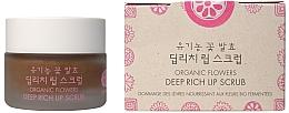 Fragrances, Perfumes, Cosmetics Organic Flowers Ferments Lip Scrub - Whamisa Organic Flowers Deep Rich Lip Scrub