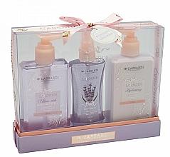 Fragrances, Perfumes, Cosmetics Set - Cassardi Lavender (sh/gel 200ml +b/balm 200ml + mist 100ml)
