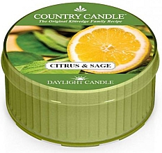"""Fragrances, Perfumes, Cosmetics Tealight """"Citrus & Sage"""" - Country Candle Citrus and Sage Daylight"""