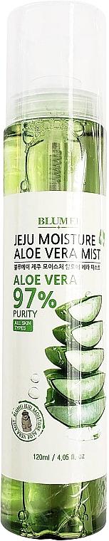 Face, Body & Hair Mist - Blumei Jeju Moisture Aloe Vera Mist