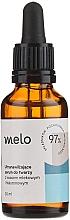 Fragrances, Perfumes, Cosmetics Hyaluronic Acid Face Serum - Melo