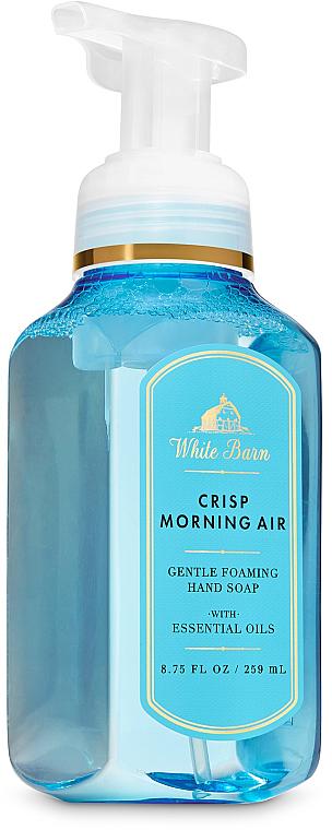 Crisp Morning Air Hand Soap - Bath and Body Works Crisp Morning Air Gentle Foaming Hand Soap — photo N1