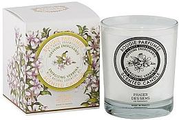 Fragrances, Perfumes, Cosmetics Panier Des Sens Verbena - Scented Candle