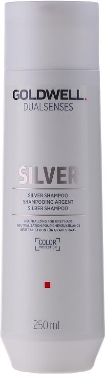 Correcting Shampoo for Gray & Blonde Hair - Goldwell Dualsenses Silver