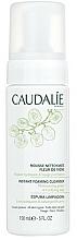 Cleansing Mousse - Caudalie Mousse Nettoyante Fleur Vigne — photo N2