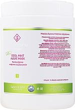 Fragrances, Perfumes, Cosmetics Mint Alginate Face Mask - Charmine Rose Cool Mint Algae Mask