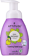 "Fragrances, Perfumes, Cosmetics Hand Soap ""Vanilla & Pear"" - Attitude Foaming Hand Soap"